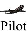 IMAGEM PILOT INTERACTION 1